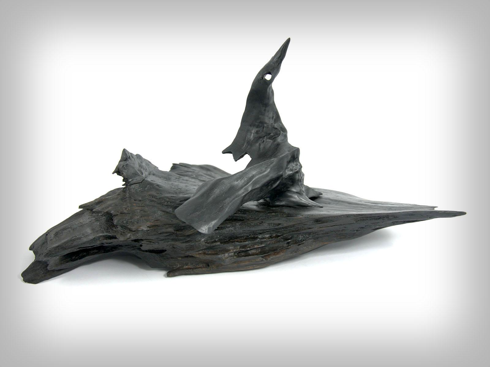 Delfin na obrežju